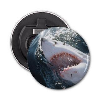 Great White Shark on sea