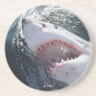 Great White Shark on sea Coaster
