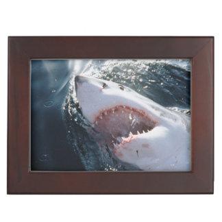 Great White Shark on sea Keepsake Box