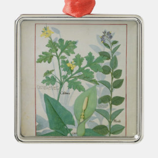 Greater Celandine or Poppy Christmas Ornament