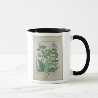 Greater Celandine or Poppy Mug