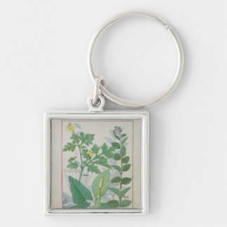 Greater Celandine or Poppy Silver-Colored Square Key Ring