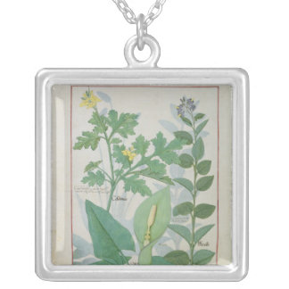 Greater Celandine or Poppy Silver Plated Necklace
