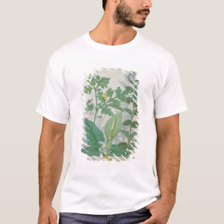 Greater Celandine or Poppy T-Shirt