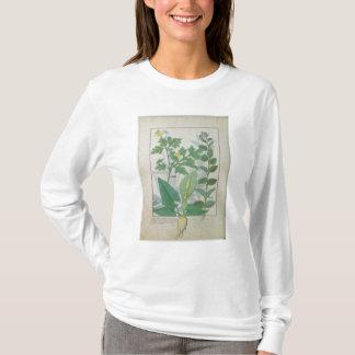 Greater Celandine or Poppy T-Shirt