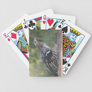 Greater Roadrunner in Texas 2 Poker Deck