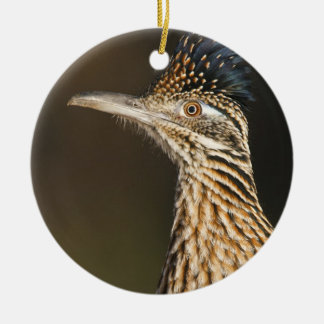 Greater Roadrunner in Texas Christmas Ornament