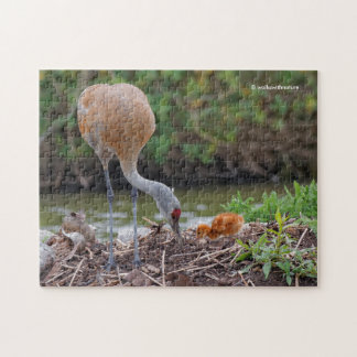 Greater Sandhill Crane Father and Child Puzzle