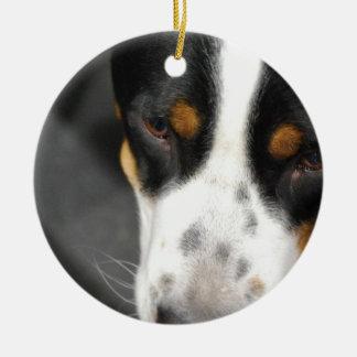 greater-swiss-mountain-dog-1.jpg christmas ornament