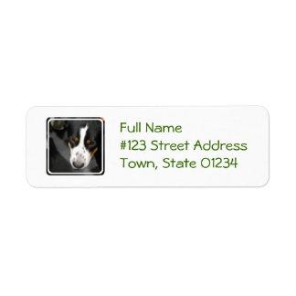 greater-swiss-mountain-dog-1.jpg return address label