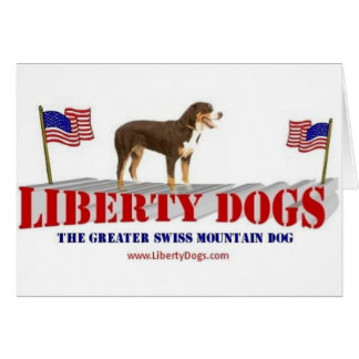 Greater Swiss Mountain Dog Greeting Cards