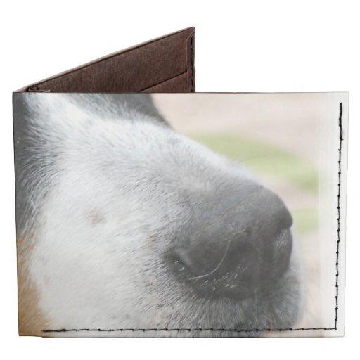 Greater Swiss Mountain Dog Tyvek Wallet