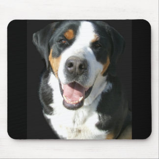 Greater Swiss Mountain Dog Happy Mouse Pads