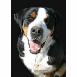 Greater Swiss Mountain Dog Happy Ornament Photo Sculpture Decoration