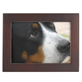 Greater Swiss Mountain Dog Memory Boxes