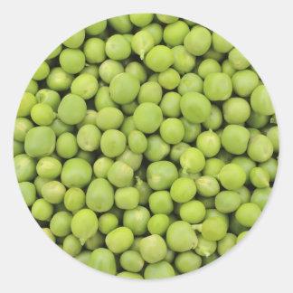 Greean peas / Pisum sativum Classic Round Sticker