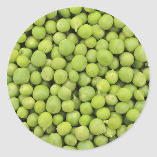 Greean peas / Pisum sativum Round Sticker