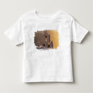 Greece, Cyclades Islands, Santorini, Thira, Toddler T-Shirt