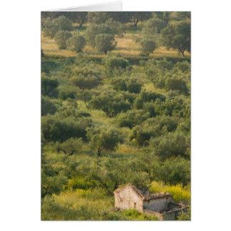 GREECE, Ionian Islands, KEFALONIA, Havriata: Card