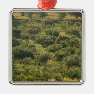 GREECE, Ionian Islands, KEFALONIA, Havriata: Christmas Ornament