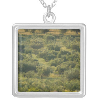 GREECE, Ionian Islands, KEFALONIA, Havriata: Silver Plated Necklace