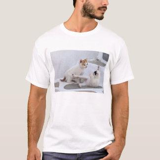 Greece, Mykonos, Kittens playing. T-Shirt