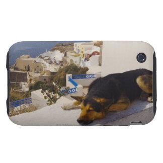 Greece, Santorini Island, Oia City, dog sleeping iPhone 3 Tough Cover