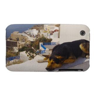 Greece, Santorini Island, Oia City, dog sleeping Case-Mate iPhone 3 Case