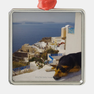 Greece, Santorini Island, Oia City, dog sleeping Christmas Ornament