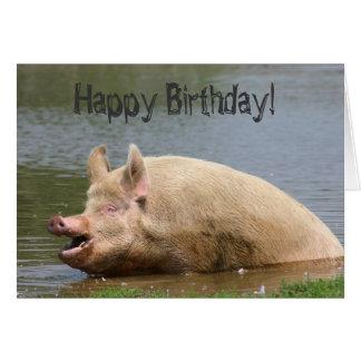 Greedy pig Birthday Greeting Card