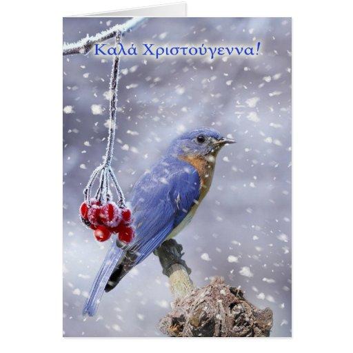 Greek - Blue Bird Christmas Greeting Card