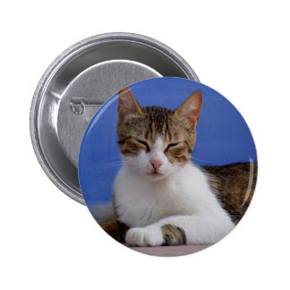 Greek Cat Button