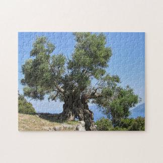 Greek Olive Tree (Kefalonia) Jigsaw Puzzle