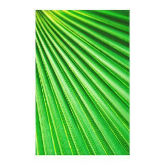 Green Abstract Palm Plant Fan Canvas