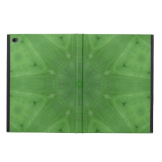 Green abstract pattern powis iPad air 2 case