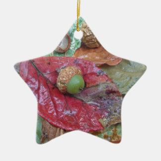 Green Acorn on a Red Fall Leaf Ceramic Star Decoration
