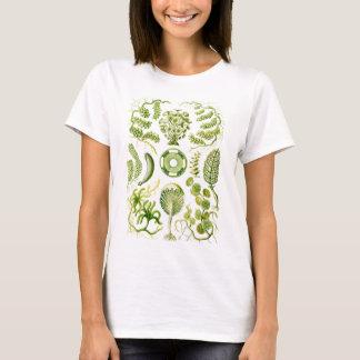 Green Algae T-Shirt
