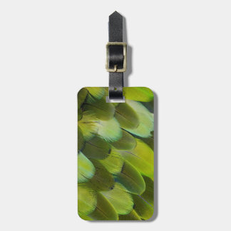 Green Amazon Parrot Feathers Luggage Tag