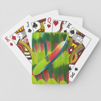 Green amazon parrot feathers playing cards