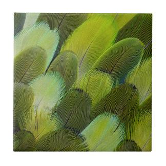 Green Amazon Parrot Feathers Tile