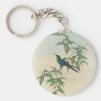 Green and Blue Gould Hummingbird Basic Round Button Key Ring
