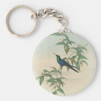 Green and Blue Gould Hummingbird Key Ring