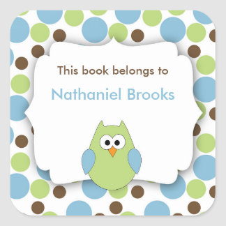 Green and Blue Owl bookplates for children Square Sticker