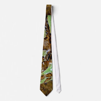Green and brown pattern frog tie