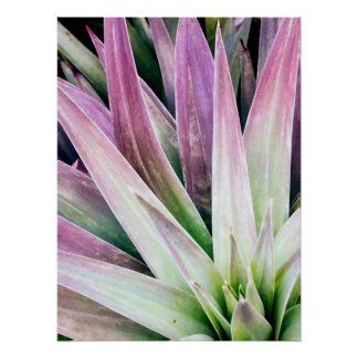 Green and Purple Yucca Poster