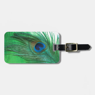 Green and White Peacock Feather Still Life Luggage Tag