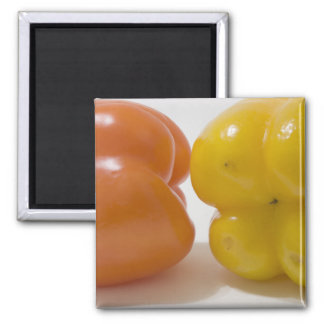 Green and Yellow Bell Peppers Square Magnet