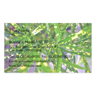 Green and Yellow speckled leaves Pack Of Standard Business Cards