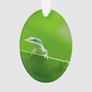 Green Anole Lizard Encounter Ornament