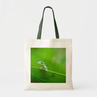 Green Anole Lizard Encounter Tote Bag